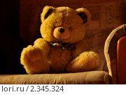 Игрушка (2011 год). Редакционное фото, фотограф Иван Трошин / Фотобанк Лори