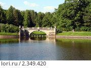 Мост в Павловском парке. Стоковое фото, фотограф Антон Ермолов / Фотобанк Лори