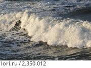Купить «Волна», фото № 2350012, снято 16 января 2011 г. (c) Татьяна Кахилл / Фотобанк Лори
