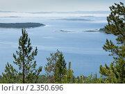 Купить «Красивый вид на Кандалакшский залив со смотровой площадки», фото № 2350696, снято 6 июля 2010 г. (c) Михаил Иванов / Фотобанк Лори
