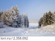 Купить «Заснеженные хвойные деревья на берегу реки», фото № 2358092, снято 23 января 2011 г. (c) Владимир Мельников / Фотобанк Лори