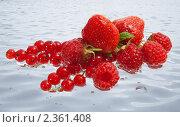 Спелые лесные ягоды в воде. Стоковое фото, фотограф Кардашева Ирина Александровна / Фотобанк Лори