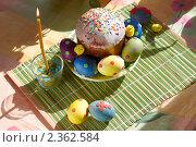Купить «Пасхальный кулич и яйца», фото № 2362584, снято 19 апреля 2009 г. (c) Ольга Красавина / Фотобанк Лори