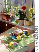 Купить «Пасхальный кулич и яйца», фото № 2362588, снято 19 апреля 2009 г. (c) Ольга Красавина / Фотобанк Лори