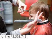 Купить «Первая стрижка», фото № 2362748, снято 21 февраля 2011 г. (c) Руслан Керимов / Фотобанк Лори