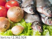 Купить «Пресноводные рыбы на листьях салата с овощами», фото № 2362924, снято 7 июня 2009 г. (c) Яков Филимонов / Фотобанк Лори