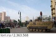 Купить «Революция в Египте», фото № 2363568, снято 20 ноября 2018 г. (c) nadegdaf / Фотобанк Лори