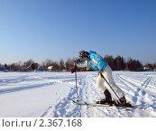 Купить «Лыжница идет с трудом», фото № 2367168, снято 23 февраля 2011 г. (c) Троицкая Алиса / Фотобанк Лори