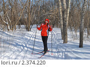 Купить «Девушка на лыжне в зимнем лесу», фото № 2374220, снято 28 февраля 2011 г. (c) Андрей Кириллов / Фотобанк Лори