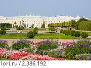 Большой дворец. Петергоф (2010 год). Редакционное фото, фотограф Александр Щепин / Фотобанк Лори