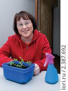 Купить «Женщина опрыскивает рассаду томатов», фото № 2387692, снято 6 марта 2011 г. (c) Куликова Татьяна / Фотобанк Лори