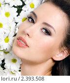 Купить «Портрет длинноволосой брюнетки с цветами», фото № 2393508, снято 26 февраля 2011 г. (c) Валуа Виталий / Фотобанк Лори