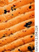 Купить «Поверхность испеченного кекса с изогнутыми линиями», фото № 2394224, снято 30 декабря 2010 г. (c) Андрей Востриков / Фотобанк Лори