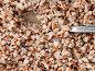 Гречневая каша, эксклюзивное фото № 2396612, снято 10 марта 2011 г. (c) Игорь Низов / Фотобанк Лори