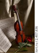 Купить «Натюрморт со скрипкой», фото № 2407836, снято 21 марта 2009 г. (c) Елена Гаврилова / Фотобанк Лори
