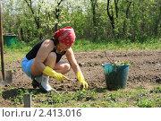 Купить «Весенние работы в огороде», фото № 2413016, снято 4 мая 2008 г. (c) Александр Мишкин / Фотобанк Лори