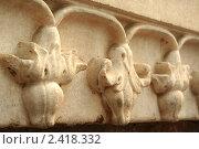 Купить «Каменный узор в виде цветов», фото № 2418332, снято 9 декабря 2009 г. (c) Вера Тропынина / Фотобанк Лори