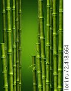 Фон из стеблей бамбука. Стоковая иллюстрация, иллюстратор Игнатьева Алевтина / Фотобанк Лори