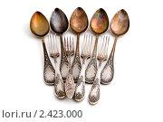 Купить «Столовое серебро», фото № 2423000, снято 22 марта 2011 г. (c) Угоренков Александр / Фотобанк Лори
