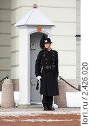 Купить «Норвежский королевский гвардеец на посту около королевского дворца в Осло», фото № 2426020, снято 7 марта 2011 г. (c) Михаил Марковский / Фотобанк Лори