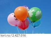 Купить «Разноцветные воздушные шарики», эксклюзивное фото № 2427016, снято 13 марта 2011 г. (c) lana1501 / Фотобанк Лори