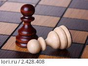 Купить «Две пешки на шахматной доске», фото № 2428408, снято 29 октября 2010 г. (c) Pshenichka / Фотобанк Лори
