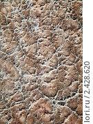Купить «Текстура безжизненного берега с солью Мертвого моря», фото № 2428620, снято 11 марта 2011 г. (c) Николай Винокуров / Фотобанк Лори
