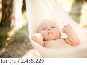 Купить «Маленький голенький ребенок, спящий в гамаке», фото № 2435220, снято 17 июля 2010 г. (c) Бурков Андрей / Фотобанк Лори