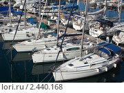 Купить «Яхты», фото № 2440168, снято 20 декабря 2010 г. (c) Яков Филимонов / Фотобанк Лори