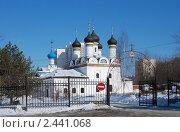 Купить «Москва. Церковь Покрова Пресвятой Богородицы в Братцево», эксклюзивное фото № 2441068, снято 9 марта 2011 г. (c) lana1501 / Фотобанк Лори