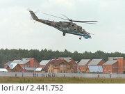 Купить «Аэрошоу в Монино. Посадка боевого вертолёта Ми-24», фото № 2441752, снято 29 июля 2005 г. (c) Михаил Иванов / Фотобанк Лори