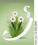 Купить «Нарциссы и лента», иллюстрация № 2442808 (c) Елена Жучкова / Фотобанк Лори