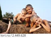 Мальчики на сене. Стоковое фото, фотограф Андрей Петренко / Фотобанк Лори