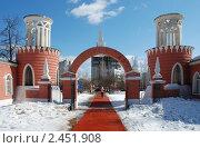 Купить «Усадьба Воронцово. Москва», эксклюзивное фото № 2451908, снято 31 марта 2010 г. (c) lana1501 / Фотобанк Лори