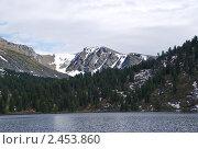 В горах Алтая. Стоковое фото, фотограф Юрий Караваев / Фотобанк Лори