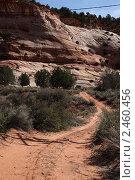 Дорога в горы. Стоковое фото, фотограф Вероника Горбова / Фотобанк Лори