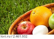 Купить «Плетёная корзина с фруктами и белыми яйцами на трава», фото № 2461932, снято 1 апреля 2010 г. (c) Иванова Марина / Фотобанк Лори