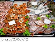 Свежие морепродукты с ценниками. Стоковое фото, фотограф Валентин Олейников / Фотобанк Лори