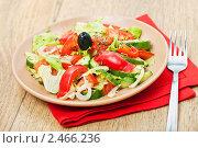 Купить «Овощной салат», фото № 2466236, снято 8 апреля 2011 г. (c) ElenArt / Фотобанк Лори