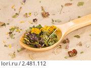 Купить «Лечебный травяной сбор», эксклюзивное фото № 2481112, снято 9 апреля 2011 г. (c) Давид Мзареулян / Фотобанк Лори