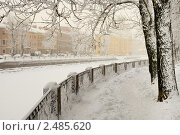Купить «Зимняя набережная канала Грибоедова. Санкт-Петербург», эксклюзивное фото № 2485620, снято 16 января 2010 г. (c) Александр Алексеев / Фотобанк Лори