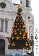 Купить «Елка на фоне Храма Христа Спасителя», фото № 2494680, снято 16 января 2011 г. (c) Elena Monakhova / Фотобанк Лори
