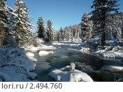 Купить «Таежная река», фото № 2494760, снято 27 октября 2009 г. (c) Владимир Никитин / Фотобанк Лори