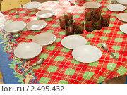 Купить «Стол накрытый для обеда в детском саду», фото № 2495432, снято 4 марта 2011 г. (c) Типляшина Евгения / Фотобанк Лори