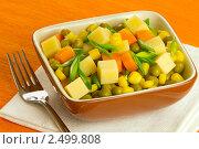 Купить «Сырный салат с кукурузой и зеленым горошком», фото № 2499808, снято 26 апреля 2011 г. (c) Ольга Иванова / Фотобанк Лори