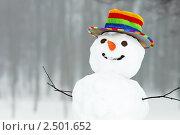 Снеговик. Стоковое фото, фотограф Дмитрий Калиновский / Фотобанк Лори