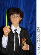 Восковая фигура Гарри Поттера (2008 год). Редакционное фото, фотограф Гуров Алексей Сергеевич / Фотобанк Лори