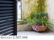 Римский балкон. Стоковое фото, фотограф Сергей Клопотов / Фотобанк Лори