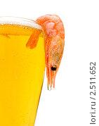 Купить «Креветка на бокале пива», фото № 2511652, снято 6 марта 2011 г. (c) Ласточкин Евгений / Фотобанк Лори
