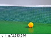 Пинг-понг. Стоковое фото, фотограф Гордиенко Олег / Фотобанк Лори